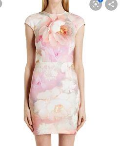 TED BAKER Quaro Rose on Canvas Dress Size 1